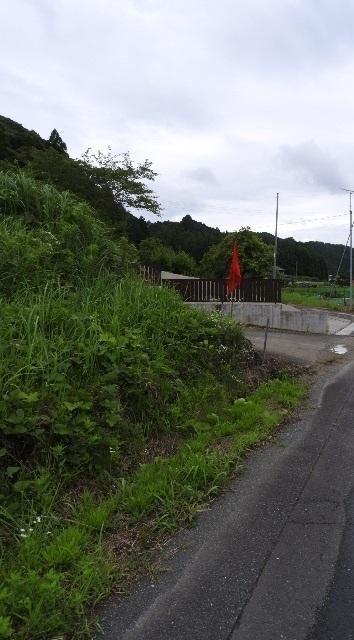 DSCN6183.JPG